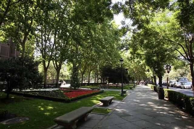 Paseo del Prado en Madrid