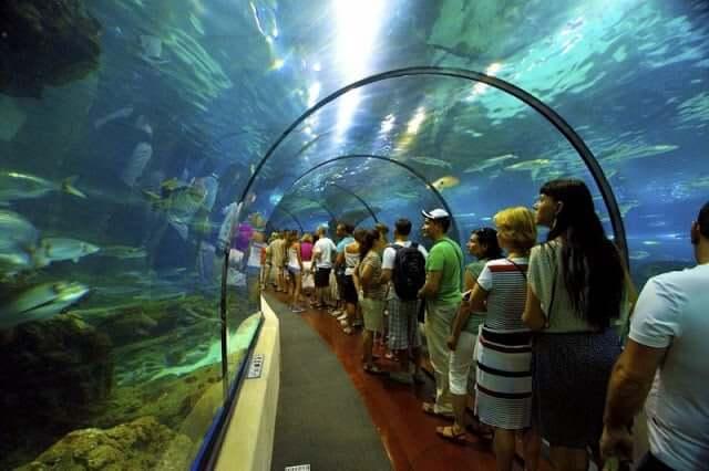 L'Aquàrium en Barcelona
